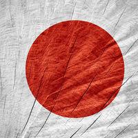 Japón tratará de hackear los dispositivos de sus ciudadanos con el objetivo de que mejoren su seguridad